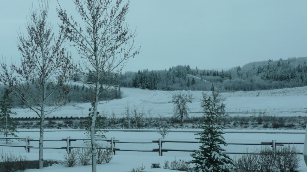 View from the Motorhome - Spring in Alberta