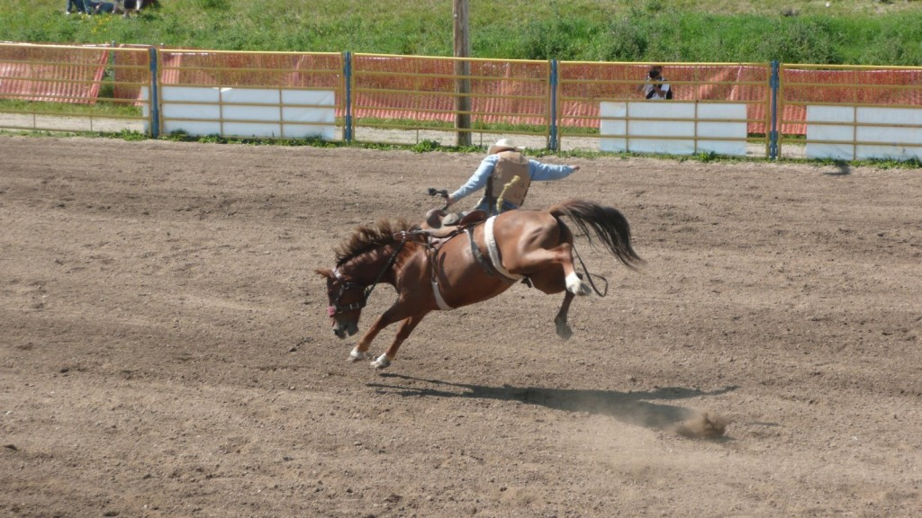 A rodeo in Aidrie AB